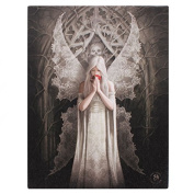 Only Love Remains - Beautiful Lace Wing Fairy by Artist Anne Stokes - Canvas Picture on Frame Wall Plaque / Wall Art