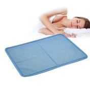 WhizzTec - Magic Multi Functional Cool Gel Pad - Pillow Laptop Yoga Mat Pet Car Cushion