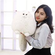 Fat pet cats persian toys plush pillow animal plush doll for baby