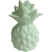 Pineapple Mini Lite Children's Night Light