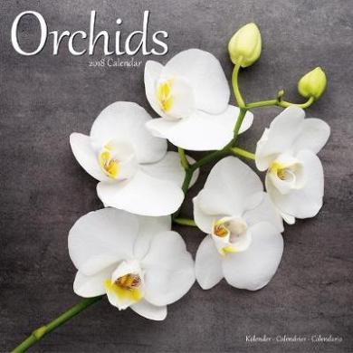 Orchids Calendar 2018
