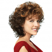 Fulltime(TM) Ms. Two-colour Gradient Small Volume Short Hair Wigs Elegant Fashion Ladies Curly Weave Layer Hair Wig