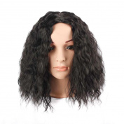 Fulltime(TM) Women's Sexy Full Bangs Wig Short Wig Afro Kinky Wig Synthetic Long Kinky Curly Wigs For Women