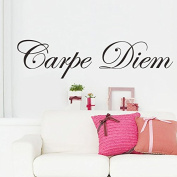 Zooarts Carpe Diem Quotes Mural Removable Wall Stickers Decals Home Room Vinyl Decor