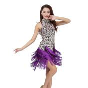 Moresave Women Latin Tassle Sequins Dress Samba Rumba Tango Ballroom Competition Dancewear