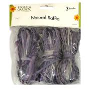 Natural Raffia 3 Bundle Pack Violet