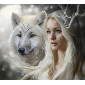 WinnerEco Wolf Beauty 5D Diamond DIY Painting Craft Kit Home Decor