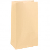 JAM Paper Lunch Bags - Medium - 13cm x 25cm x 7.6cm - Ivory Kraft - 500/Box