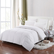 Allrange Feather and Down Comforter, Down Proof Cotton Fabric, Medium Warmth, Year Round, Hypoallergenic, Machine Washable, Easy Care, Durable