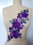 Sew on Multicoloured Lace Applique Trim Purple/green/blue Water - Soluble Embroidery Lace 42X15cm for Dress Skirt DIY Accessory