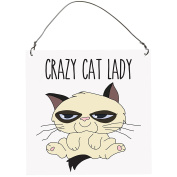 Crazy Cat Lady, Funny Retro Vintage SMALL Wall Metal PLAQUE SIGN Retro10x10cm