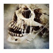 Sticar-it Ltd Creepy Skull & Cobwebs Gothic Motif Light Switch Sticker vinyl cover skin decal For any Room