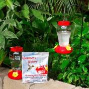 Spring Garden Garden Collection Hanging Hummingbird Bird Feeder - 17cm