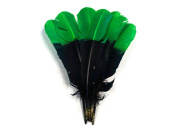 Turkey Feathers, 0.1kg Green and Black Two Tone Turkey Rounds Tom Wing Quill Secondary Feathers
