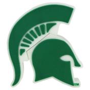 "NCAA Michigan State ""Spartan Shape"" USB Drive"