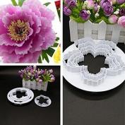 Palker Sky Cake Decorating Gumpaste Flowers & The Easiest Peony Ever Cutter Pack of 4 …