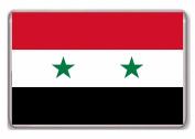 Flag Syria of fridge magnet
