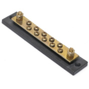 Hot Feed/Common Ground Brass 100 amp Bus Bar with Ten 8-32 Screw & Two 0.6cm -20 Stud Terminals