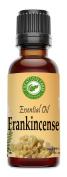Frankincense Oil - Aceite esencial de incienso - Frankincense Essential Oil 30 ml - 100% Pure