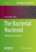 The Bacterial Nucleoid