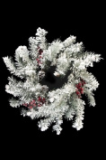 Snowy Montana Pine Wreath with Large Frosted Berries 70cm diameter