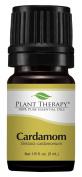 Plant Therapy Cardamom Essential Oil. 100% Pure, Undiluted, Therapeutic Grade. 5 ml (1/6 oz).