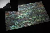 Dragon Paua Shell Enhanced Adhesive Veneer