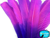 Turkey Feathers, 0.1kg Turkey Rounds Tom Wing Quill Feathers Pink Purple Ombre