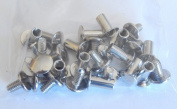Set of 50 pc packs of 1cm Nickel Plated chicago screws