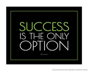 Success is the Only Option 41cm X 50cm Poster Black/Green/White