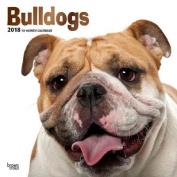 2018 Bulldogs Wall Calendar