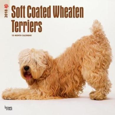 2018 Wheaten Terriers, Soft Coated Wall Calendar