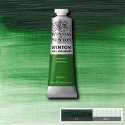 Winsor & Newton Winton Oil Paint Tube Artist Art 37ml & 200ml ALL COLOURS