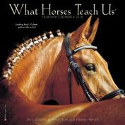 What Horses Teach Us 2018 Mini Wall Calendar