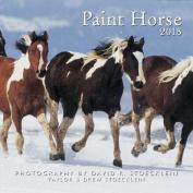 2018 Paint Horse Calendar