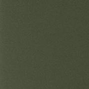 LaCarte Dark Green Pastel Paper Pack of Five - 50cm . X 60cm .