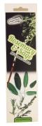 Regent House Rosemary & Sage Incense Sticks; 25 sticks per pack
