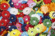 (100) in a Bag Soft Mini Daisy Flowers~5.1cm 5.1cm Small Flowers Great for Craft Projects
