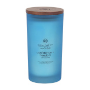 Chesapeake Bay Candle Mind & Body Collection Large Jar Candle, Confidence + Freedom