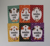 Baby Milestone Cards - Forest Animals