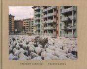 Stefano Carnelli - Transumanza