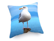 "Relaxing Gull in Ireland - 15,75"" x 15,75"" inch (40x40 cm) - weewado - cushion / pillow - art, picture, painting, photography - Artist"