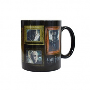 GB eye Ltd GB Eye, Harry Potter, Portraits, Heat Changing Mug, Various