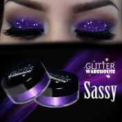 Sassy GlitterWarehouse Purple Glitter Great for Eyeshadow / Eye Shadow, Makeup, Body Tattoo, Nail Art and More!