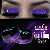 Sparkling Grape GlitterWarehouse Purple Holographic Glitter Great for Eyeshadow / Eye Shadow, Makeup, Body Tattoo, Nail Art and More!