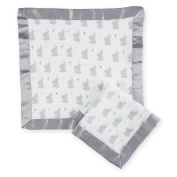 aden by aden + anais secruity blanket 2 pack, baby star