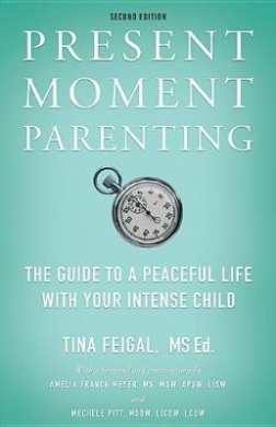 Present Moment Parenting: The Guide to a Peaceful Life with Your Intense Child