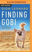Finding Gobi [Audio]
