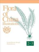 Flora of China Illustrations, Volume 2-3