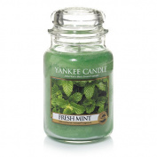Yankee Candle Fresh Mint, Fresh Scent